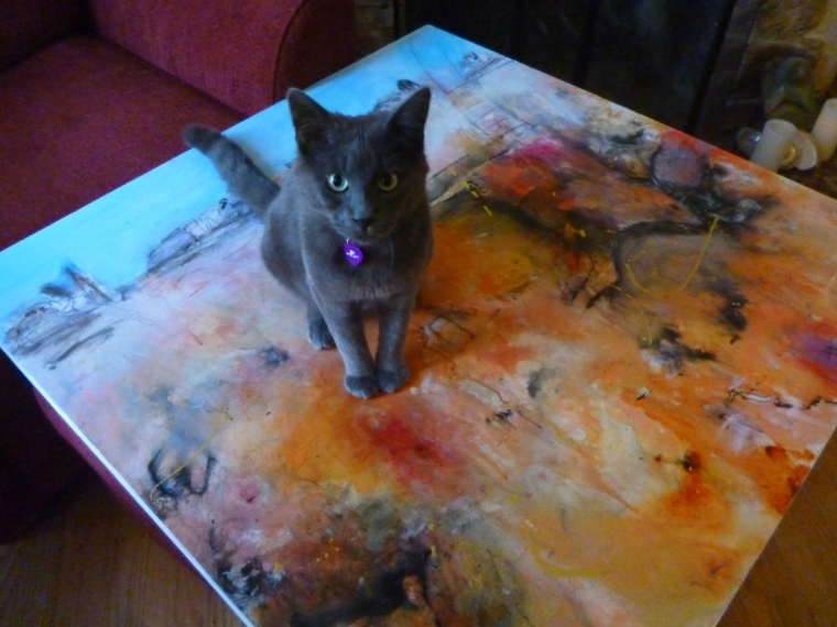Zeb the Painting Cat