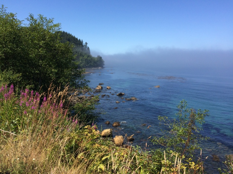 Near Cape Flattery, Olympic peninsula